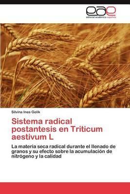 Sistema Radical Postantesis En Triticum Aestivum L
