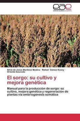 El Sorgo: Su Cultivo y Mejora Genetica