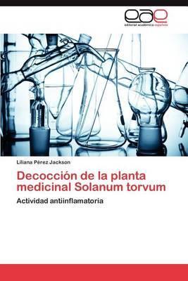 Decoccion de La Planta Medicinal Solanum Torvum