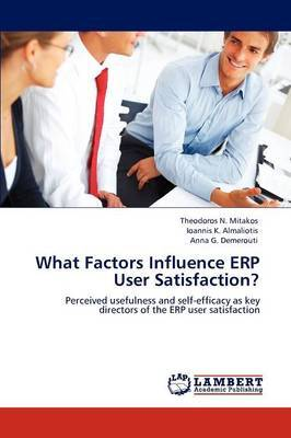 What Factors Influence Erp User Satisfaction?