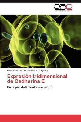 Expresion Tridimensional de Cadherina E