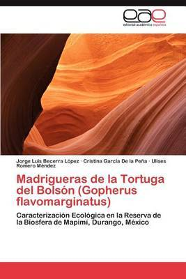 Madrigueras de La Tortuga del Bolson (Gopherus Flavomarginatus)