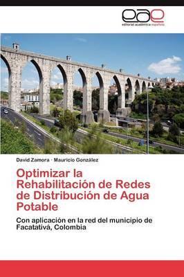 Optimizar La Rehabilitaci N de Redes de Distribuci N de Agua Potable