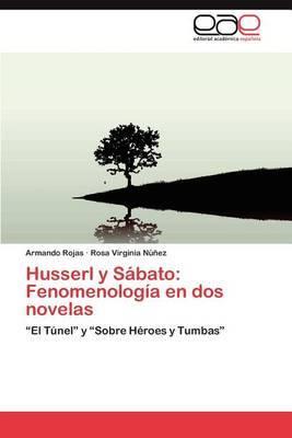 Husserl y Sabato: Fenomenologia En DOS Novelas