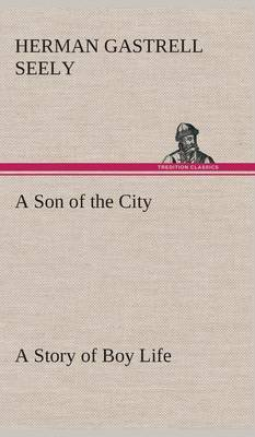 A Son of the City a Story of Boy Life
