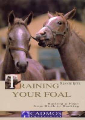 Training Your Foal: Raising a Foal - From Birth to Backing