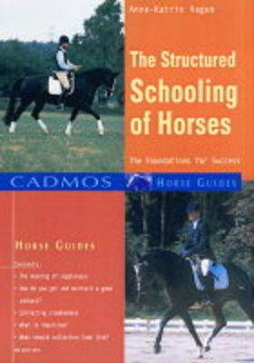 The Structured Schooling of Horses: Foundations for Success