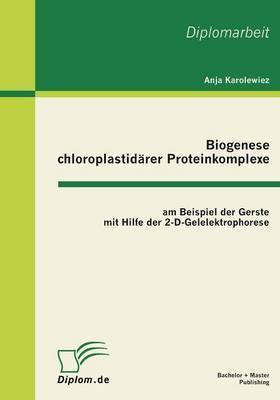 Biogenese Chloroplastidarer Proteinkomplexe Am Beispiel Der Gerste Mit Hilfe Der 2-D-Gelelektrophorese