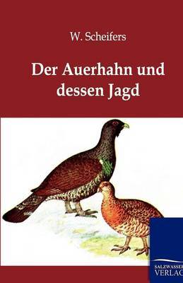 Der Auerhahn Und Dessen Jagd
