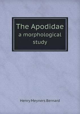 The Apodidae a Morphological Study