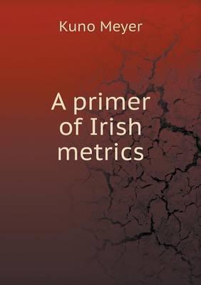 A Primer of Irish Metrics