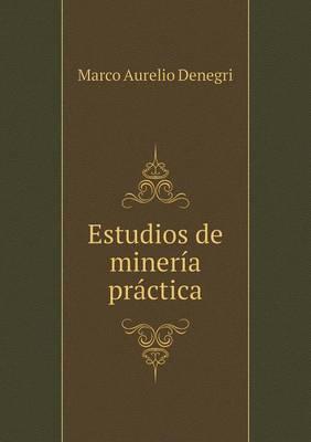Estudios de Mineria Practica