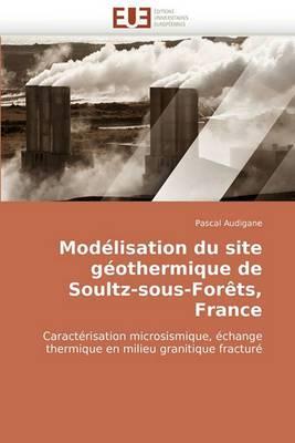 Modelisation Du Site Geothermique de Soultz-Sous-Forets, France