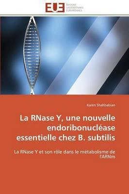 La Rnase Y, Une Nouvelle Endoribonuclease Essentielle Chez B. Subtilis