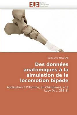 Des Donnees Anatomiques a la Simulation de La Locomotion Bipede