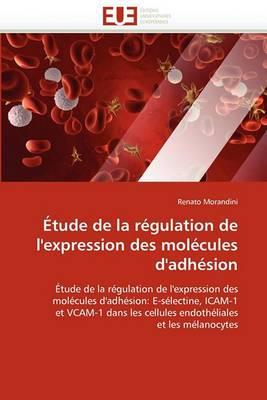Etude de la Regulation de L'Expression Des Molecules D'Adhesion
