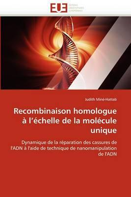 Recombinaison Homologue A L''Echelle de La Molecule Unique