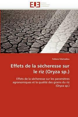 Effets de la Secheresse Sur Le Riz (Oryza Sp.)