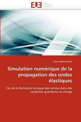 Simulation Numerique de La Propagation Des Ondes Elastiques
