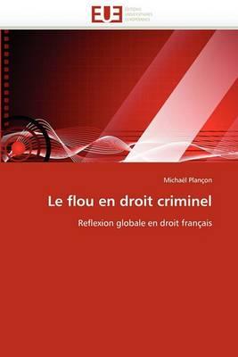 Le Flou En Droit Criminel