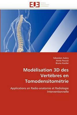 Modelisation 3D Des Vertebres En Tomodensitometrie
