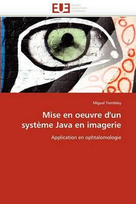 Mise En Oeuvre D''Un Systeme Java En Imagerie
