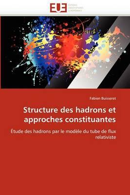 Structure Des Hadrons Et Approches Constituantes