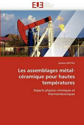 Les Assemblages Metal-Ceramique Pour Hautes Temperatures