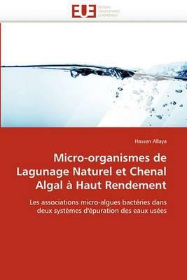 Micro-Organismes de Lagunage Naturel Et Chenal Algal a Haut Rendement