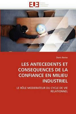 Les Antecedents Et Consequences de La Confiance En Milieu Industriel