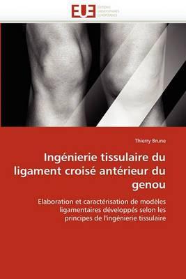 Ingenierie Tissulaire Du Ligament Croise Anterieur Du Genou