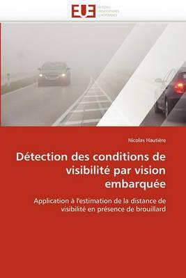 Detection Des Conditions de Visibilite Par Vision Embarquee