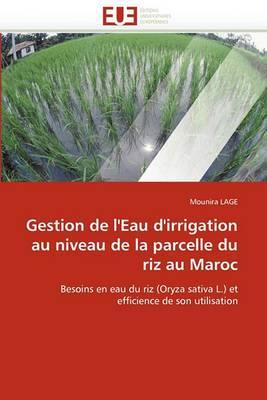 Gestion de L''Eau D''Irrigation Au Niveau de La Parcelle Du Riz Au Maroc