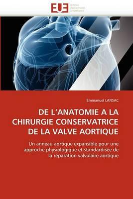 de L''Anatomie a la Chirurgie Conservatrice de La Valve Aortique