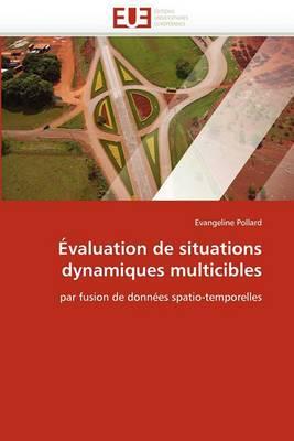 Evaluation de Situations Dynamiques Multicibles