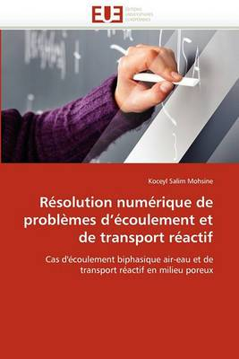 Resolution Numerique de Problemes D''Ecoulement Et de Transport Reactif