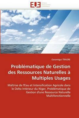Problematique de Gestion Des Ressources Naturelles a Multiples Usages