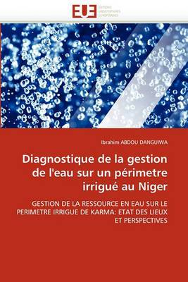 Diagnostique de La Gestion de L''Eau Sur Un Perimetre Irrigue Au Niger