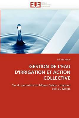 Gestion de L''Eau D''Irrigation Et Action Collective