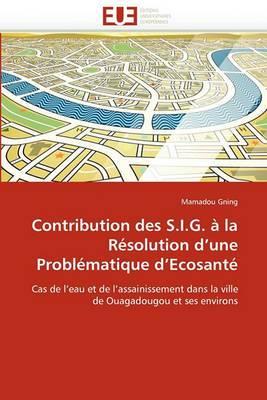 Contribution Des S.I.G. a la Resolution D''Une Problematique D''Ecosante