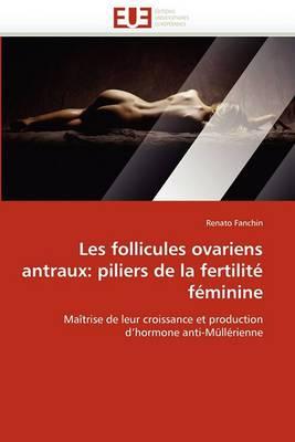 Les Follicules Ovariens Antraux: Piliers de La Fertilite Feminine