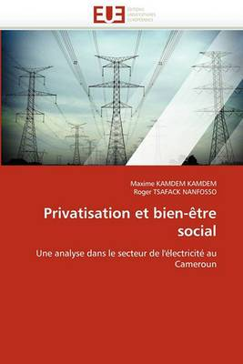 Privatisation Et Bien-Etre Social