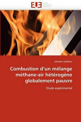 Combustion D''Un Melange Methane-Air Heterogene Globalement Pauvre