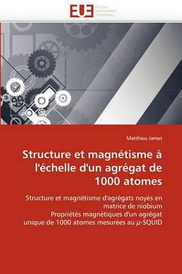 Structure Et Magnetisme A L''Echelle D''Un Agregat de 1000 Atomes
