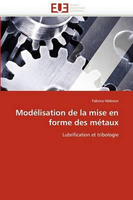 Modelisation de La Mise En Forme Des Metaux
