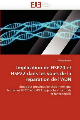 Implication de Hsp70 Et Hsp22 Dans Les Voies de La Reparation de L''Adn