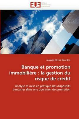 Banque Et Promotion Immobiliere: La Gestion Du Risque de Credit