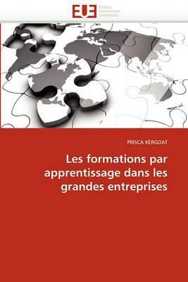 Les Formations Par Apprentissage Dans Les Grandes Entreprises