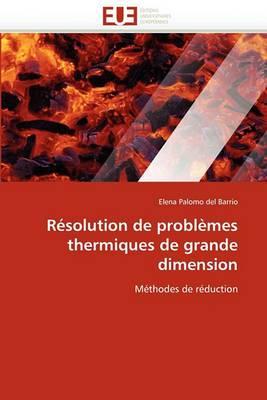 Resolution de Problemes Thermiques de Grande Dimension