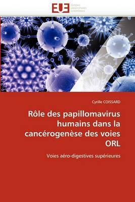 Role Des Papillomavirus Humains Dans La Cancerogenese Des Voies Orl